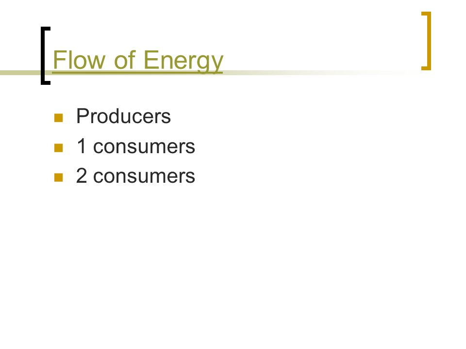 Flow of Energy Producers 1 consumers 2 consumers