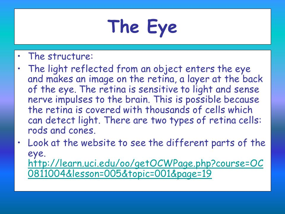 The Eye The structure: The light reflected from an object enters the eye and makes an image on the retina, a layer at the back of the eye. The retina