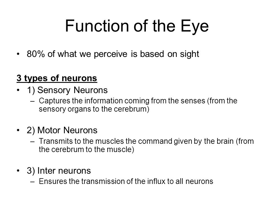 Vision – Other common ailments Near sightedness (myopia): –A person can see things from close clearly but not from far.