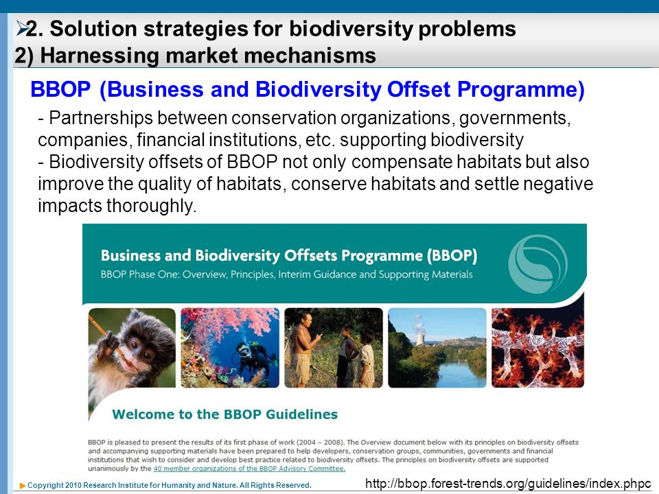Copyright 2010 Research Institute for Humanity and Nature. All Rights Reserved. 2. Solution strategies for biodiversity problems 2) Harnessing market