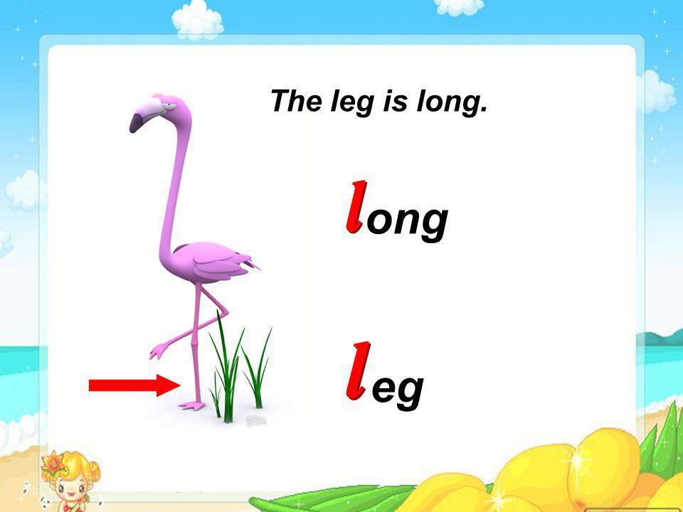 http://www.lspjy.com eg ong The leg is long.