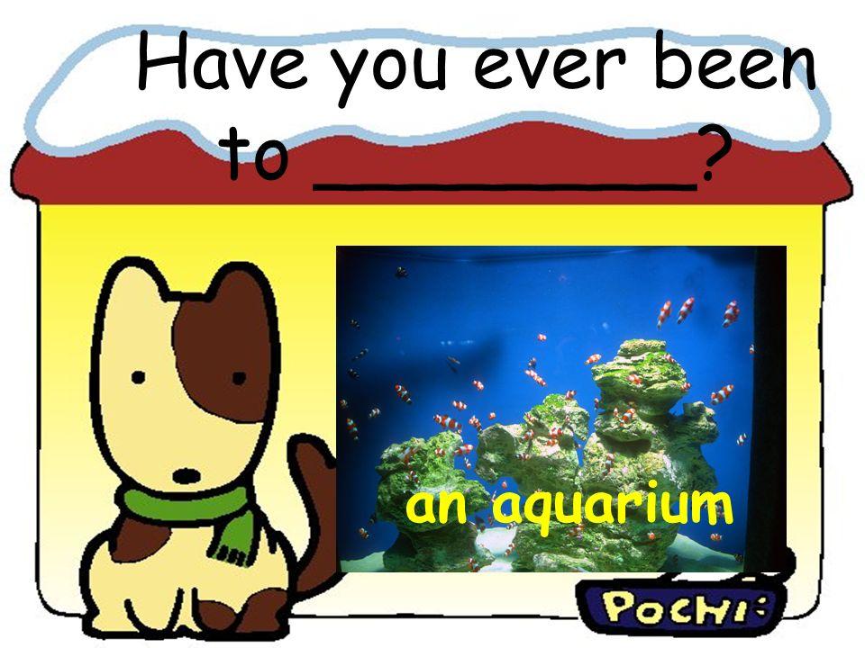 an aquarium