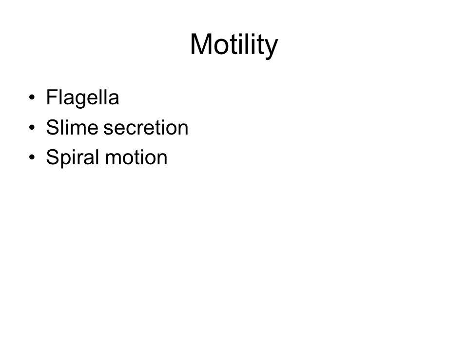 Motility Flagella Slime secretion Spiral motion