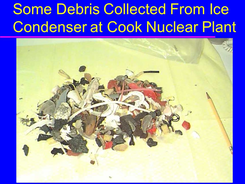 Some Debris Collected From Ice Condenser at Cook Nuclear Plant