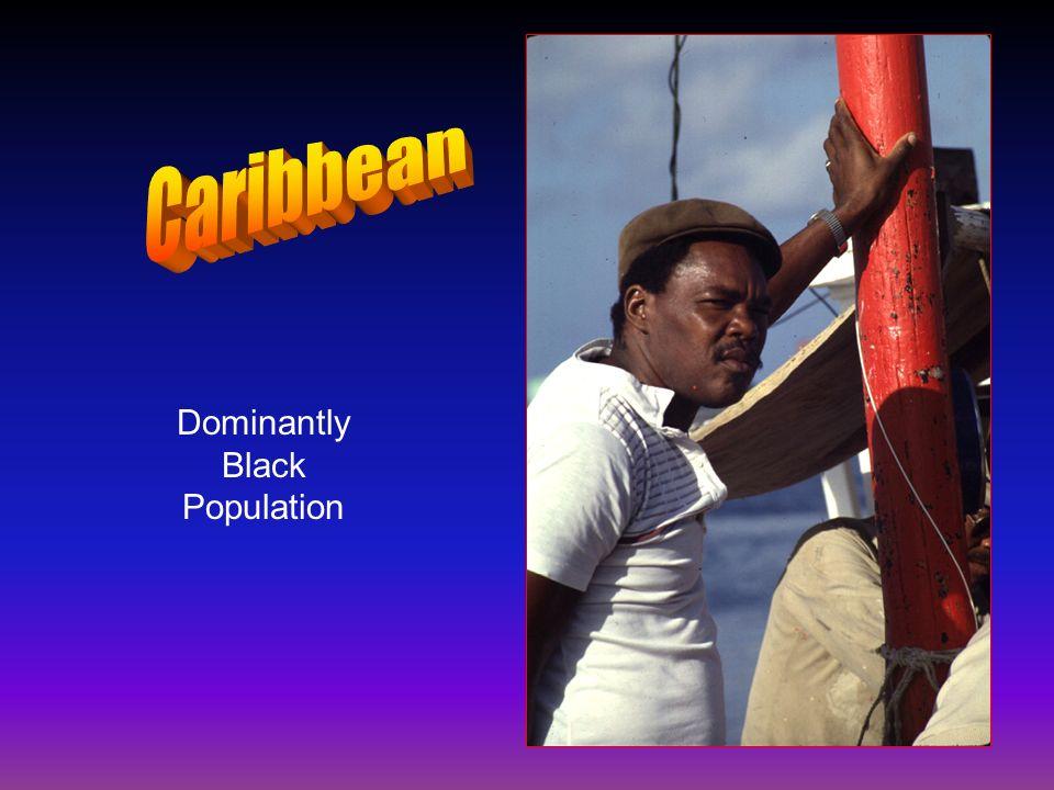 Dominantly Black Population