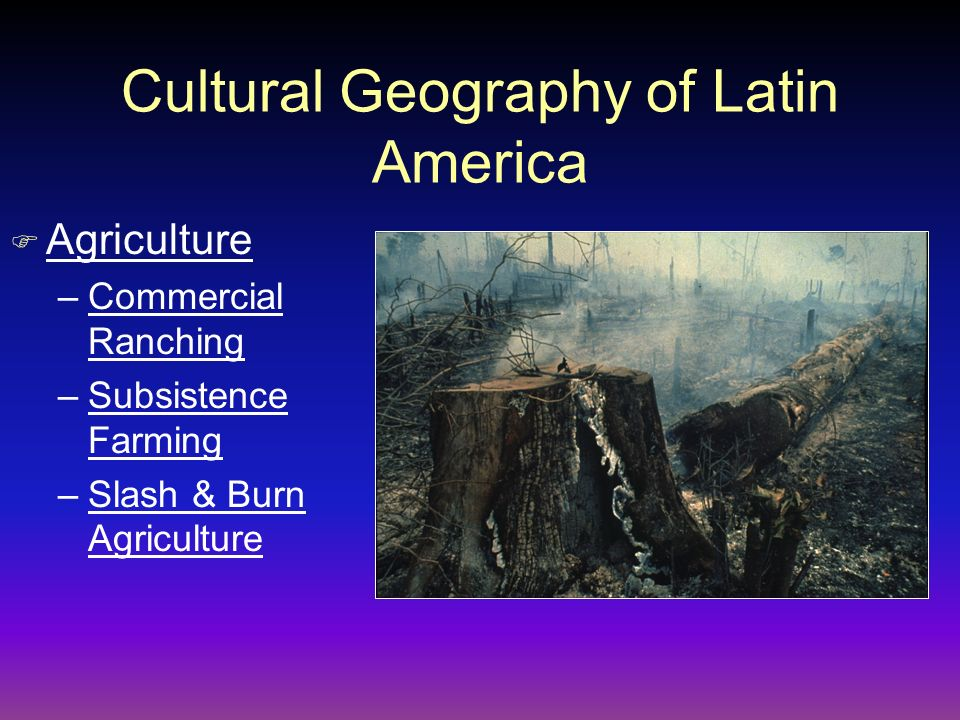 Cultural Geography of Latin America F Agriculture –Commercial Ranching –Subsistence Farming –Slash & Burn Agriculture