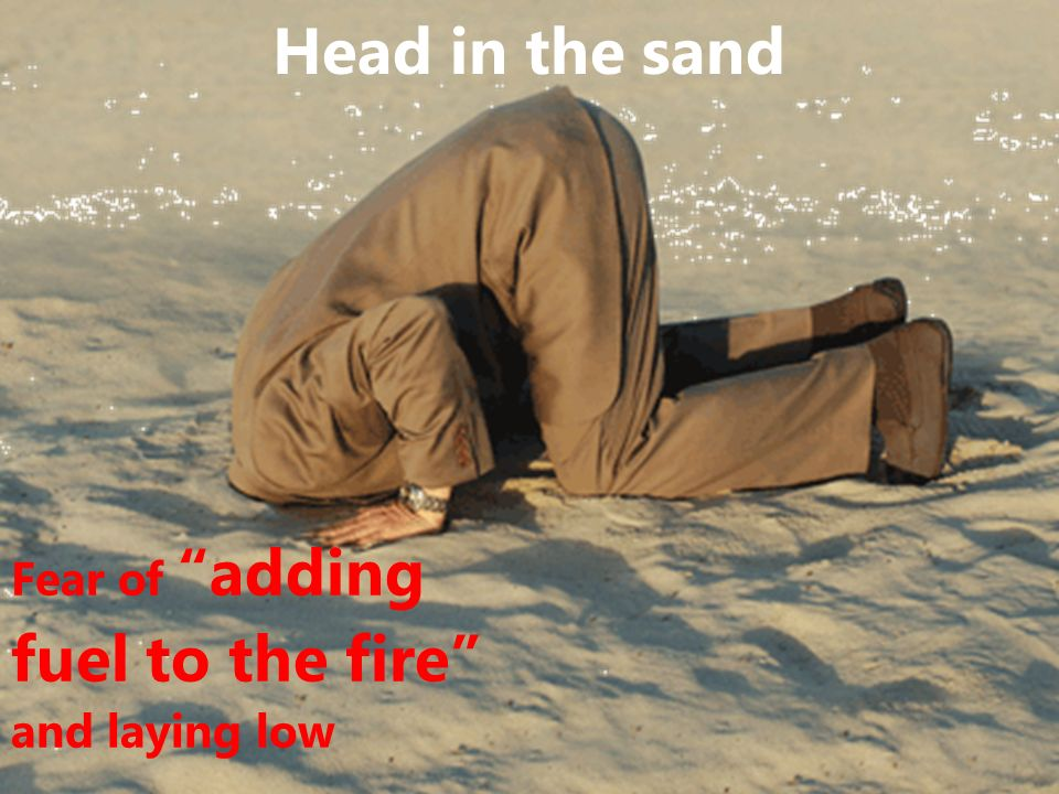 Head in the sand Fear of adding fuel to the fire and laying low