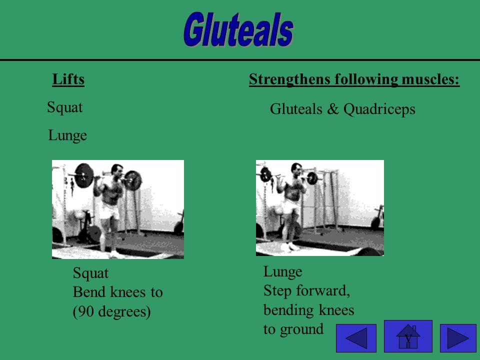 v LiftsStrengthens following muscles: Leg Extension Quadriceps Leg Press Leg Extension
