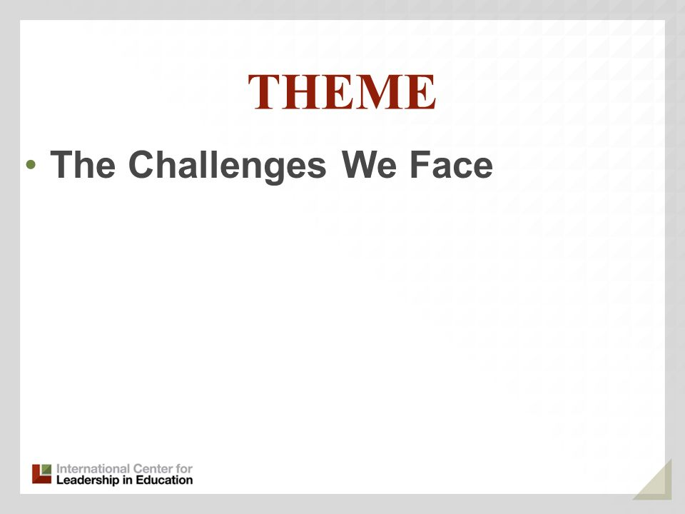 THEME The Challenges We Face
