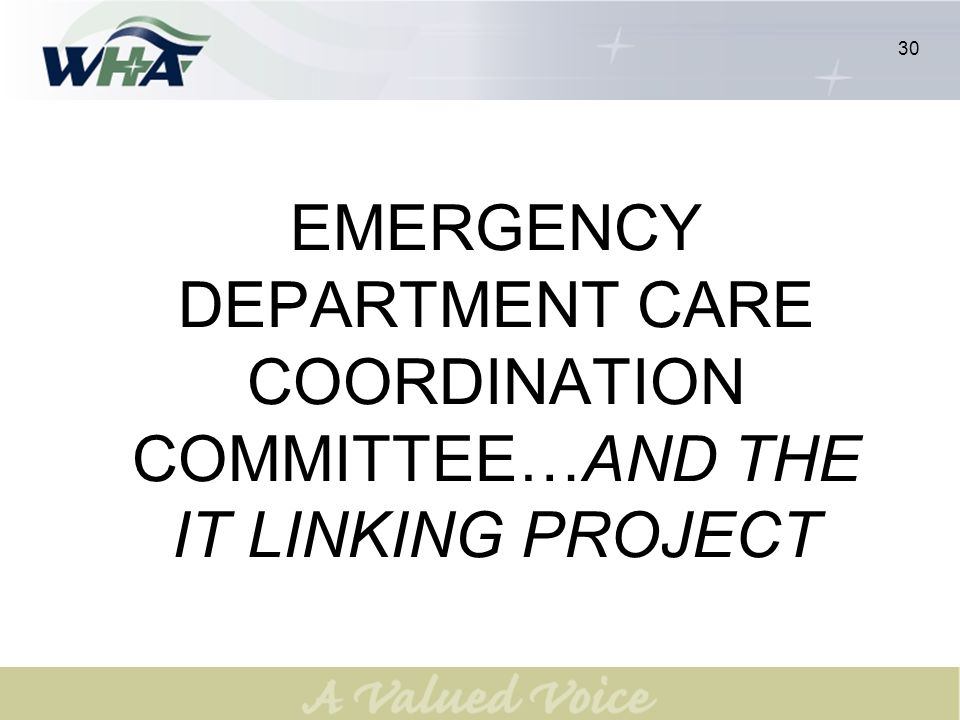 30 EMERGENCY DEPARTMENT CARE COORDINATION COMMITTEE…AND THE IT LINKING PROJECT 30