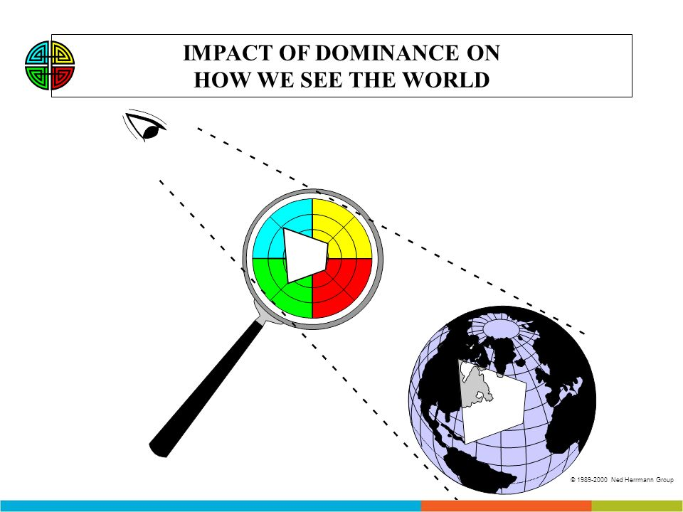 IMPACT OF DOMINANCE ON HOW WE SEE THE WORLD © 1989-2000 Ned Herrmann Group