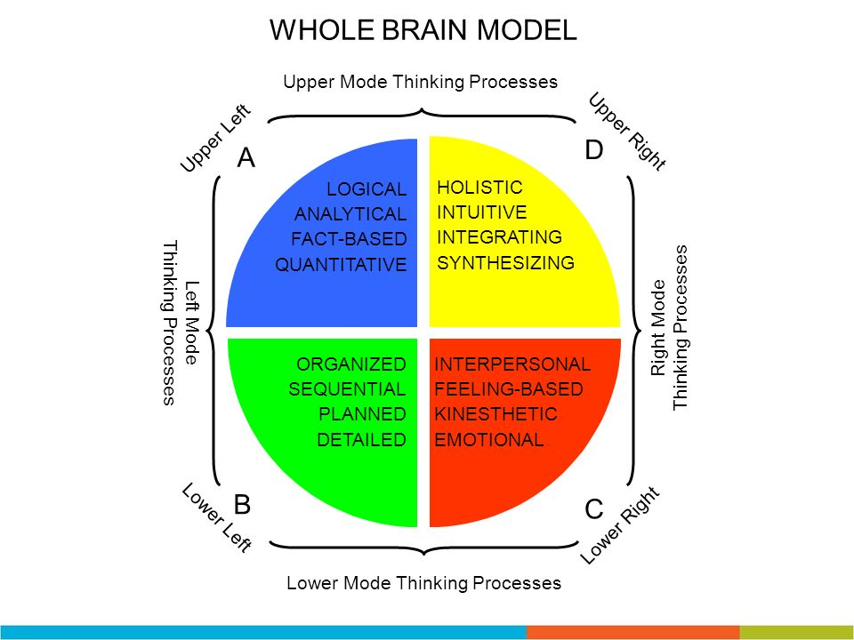 Right Mode Thinking Processes Left Mode Thinking Processes Upper Mode Thinking Processes Lower Mode Thinking Processes D Upper Right A Upper Left B Lo