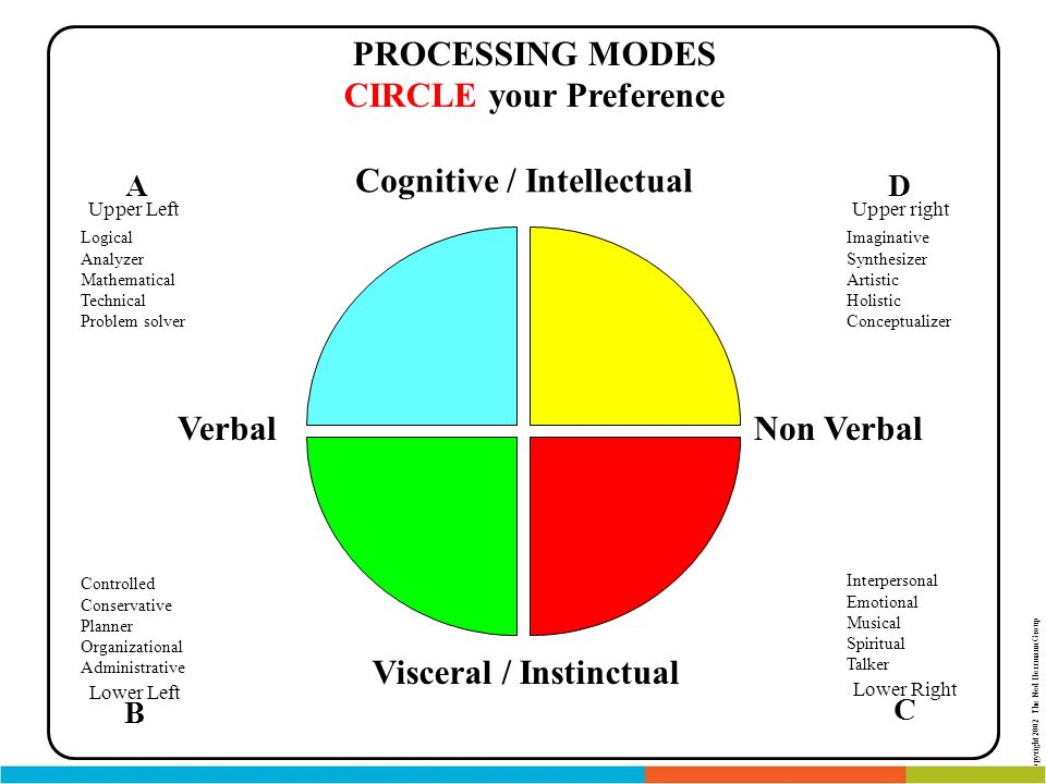 PROCESSING MODES CIRCLE your Preference Cognitive / Intellectual Visceral / Instinctual Non VerbalVerbal Lower Left B Controlled Conservative Planner