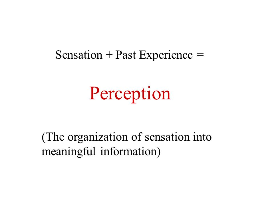 Perception Sensation + Past Experience = (The organization of sensation into meaningful information)
