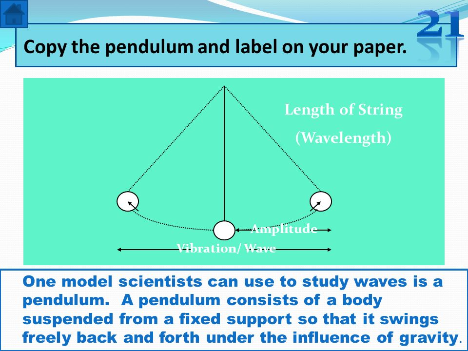 Copy the pendulum and label on your paper. Length of String (Wavelength) Amplitude Vibration/ Wave One model scientists can use to study waves is a pe