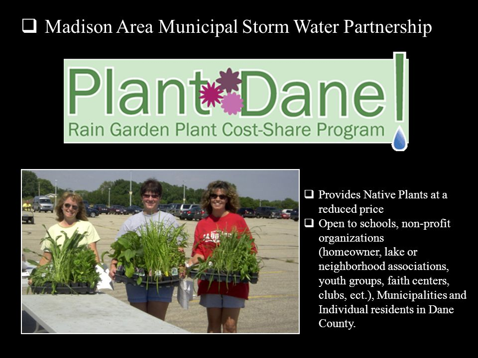 Provides Native Plants at a reduced price Open to schools, non-profit organizations (homeowner, lake or neighborhood associations, youth groups, faith centers, clubs, ect.), Municipalities and Individual residents in Dane County.