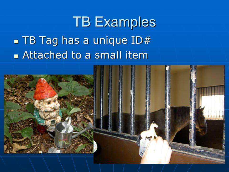 TB Examples TB Tag has a unique ID# TB Tag has a unique ID# Attached to a small item Attached to a small item
