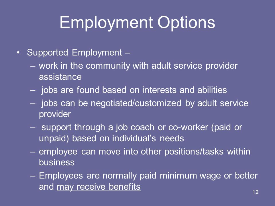 12 Employment Options Supported Employment – –work in the community with adult service provider assistance – jobs are found based on interests and abi