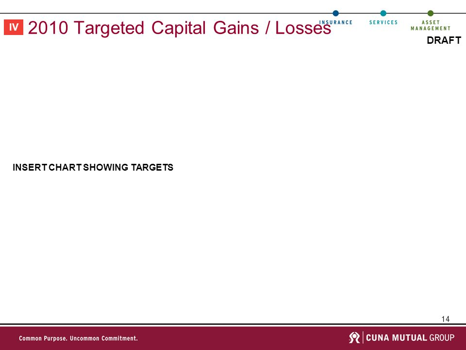 14 DRAFT 2010 Targeted Capital Gains / Losses INSERT CHART SHOWING TARGETS IV