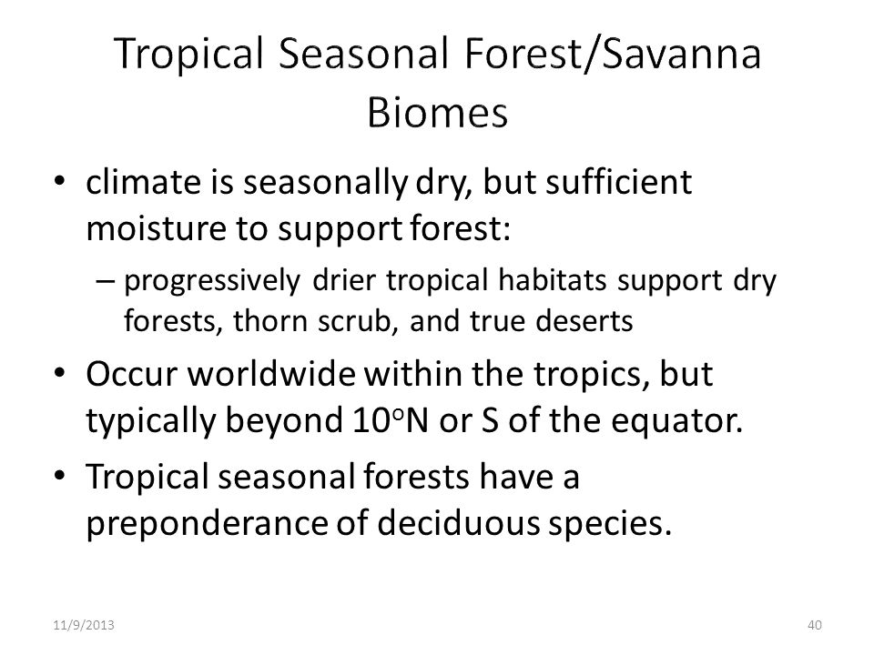 climate is seasonally dry, but sufficient moisture to support forest: – progressively drier tropical habitats support dry forests, thorn scrub, and tr