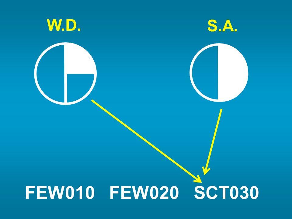 FEW010 FEW020 SCT030 W.D. S.A.