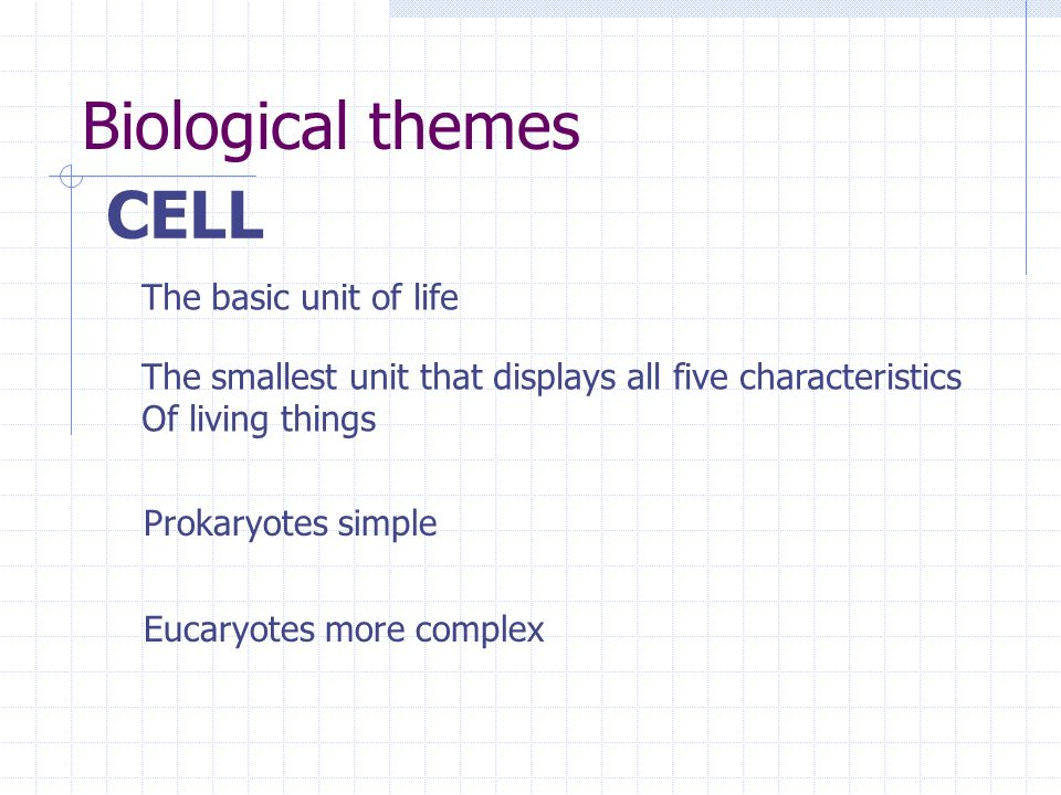 CELL The basic unit of life The smallest unit that displays all five characteristics Of living things Prokaryotes simple Eucaryotes more complex Biolo