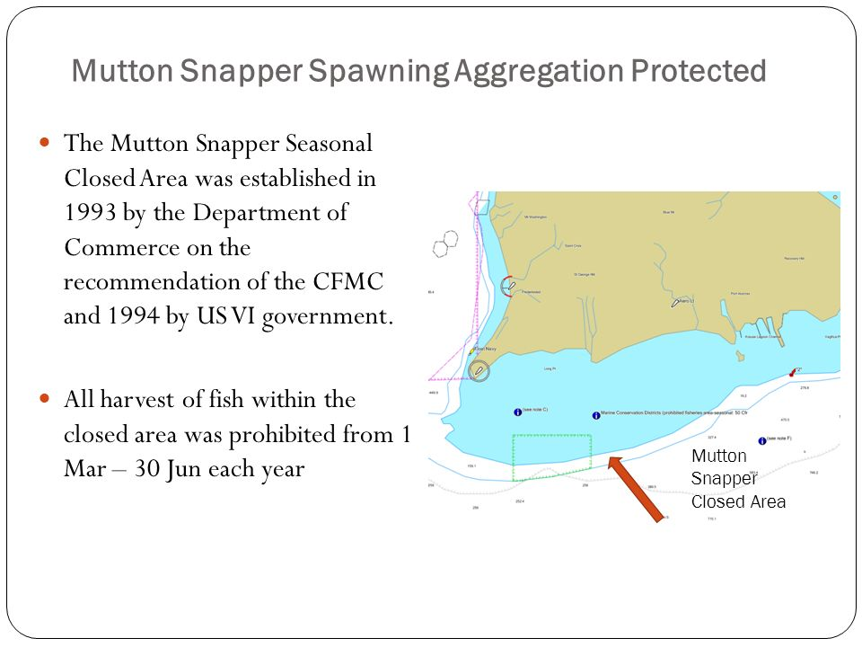 Mutton Snapper Spawning Aggregation Protected The Mutton Snapper Seasonal Closed Area was established in 1993 by the Department of Commerce on the rec
