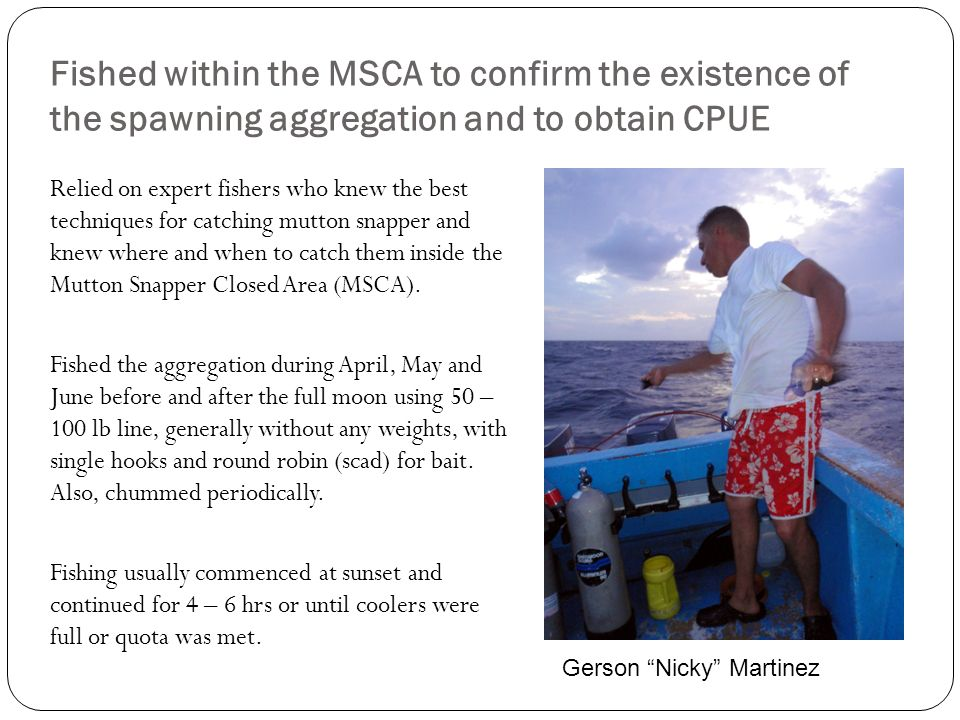 Fished within the MSCA to confirm the existence of the spawning aggregation and to obtain CPUE Relied on expert fishers who knew the best techniques f
