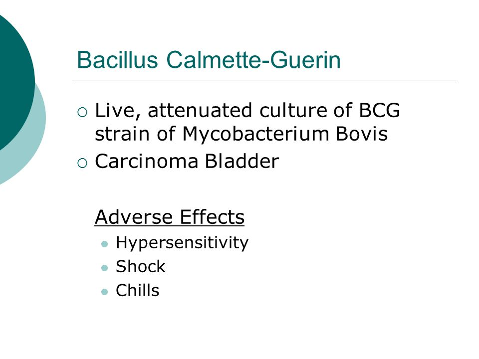 Bacillus Calmette-Guerin Live, attenuated culture of BCG strain of Mycobacterium Bovis Carcinoma Bladder Adverse Effects Hypersensitivity Shock Chills