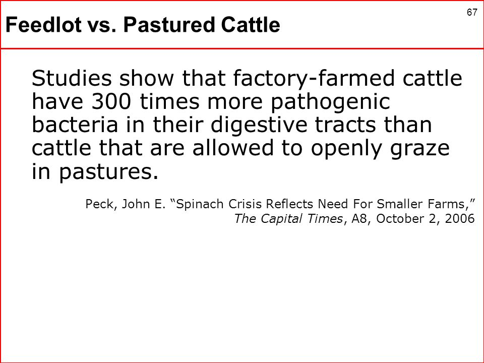 67 Feedlot vs. Pastured Cattle Studies show that factory-farmed cattle have 300 times more pathogenic bacteria in their digestive tracts than cattle t
