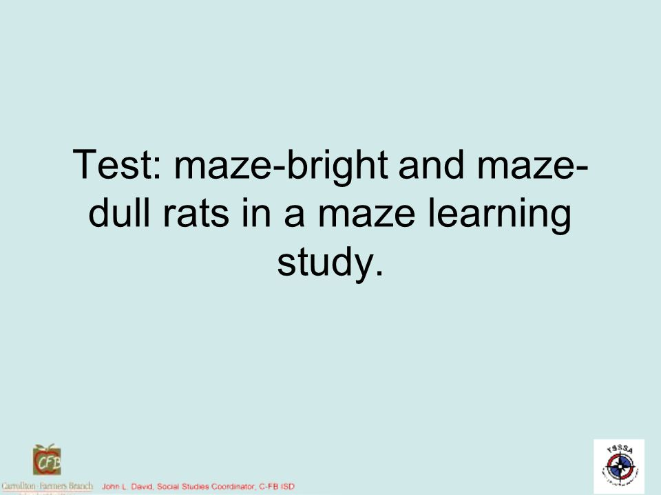 Test: maze-bright and maze- dull rats in a maze learning study.