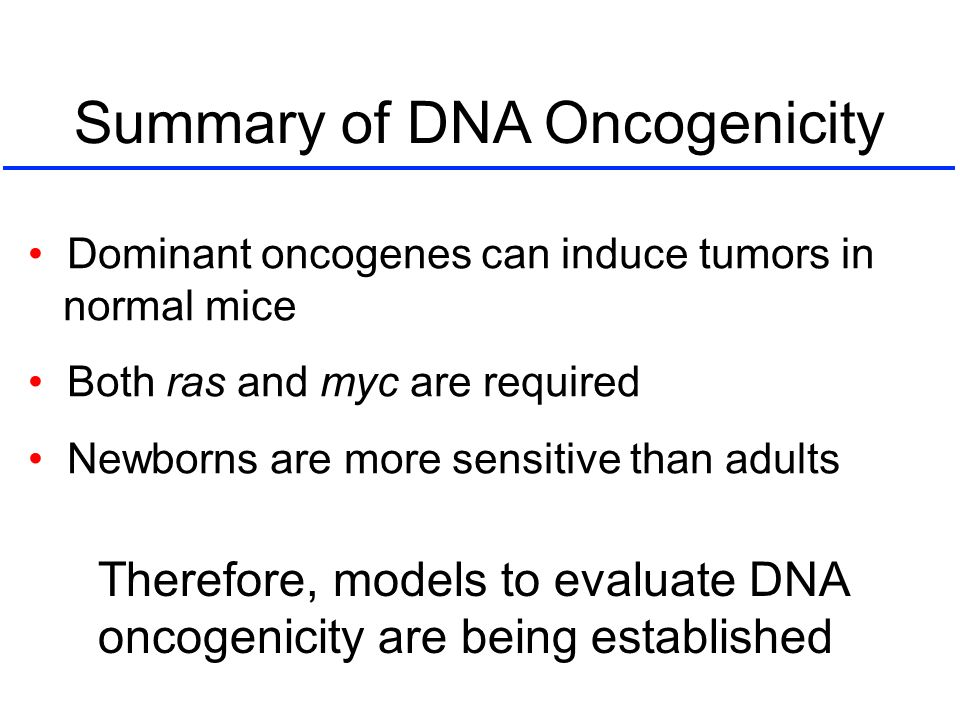 Summary of DNA Oncogenicity Dominant oncogenes can induce tumors in normal mice Both ras and myc are required Newborns are more sensitive than adults