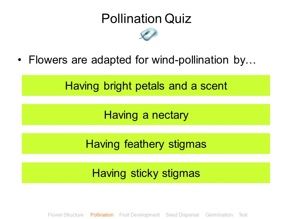 Pollination Quiz Cross-pollination… Increases variation Decreases variation Is only performed by wind Is only performed by insects Flower Structure Po