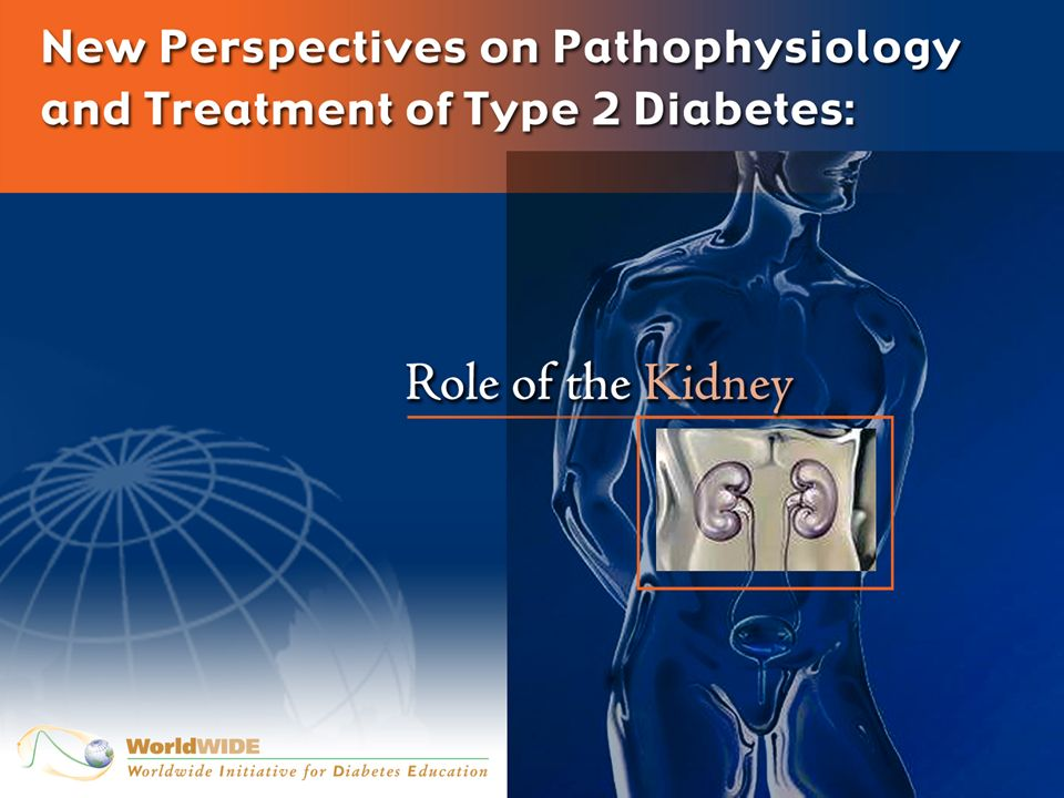 Etiology of -Cell Dysfunction in Type 2 Diabetes Insulin Resistance Age -Cell Dysfunction -Cell DysfunctionGenetics (TCF 7L2) Lipotoxicity Free Fatty Acids Glucose Toxicity Amyloid (Islet Amyloid Polypeptide) Deposition Incretin IncretinEffect