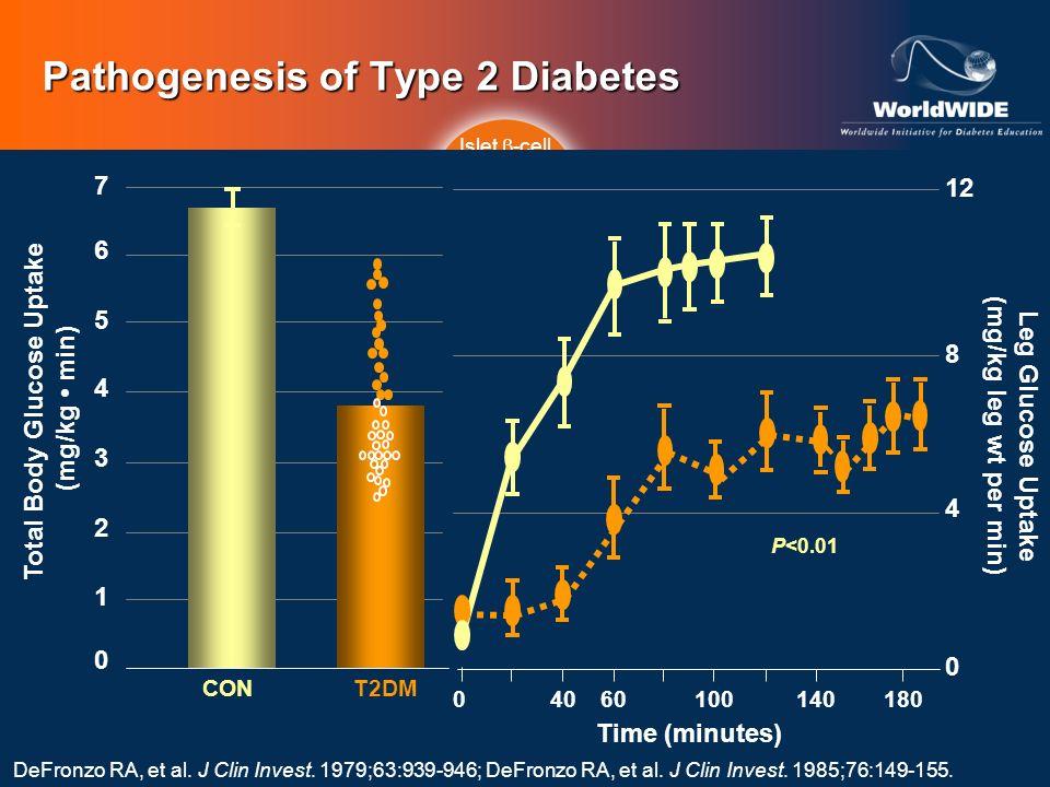Pathogenesis of Type 2 Diabetes Islet -cell Impaired Insulin Secretion DeFronzo RA, et al. J Clin Invest. 1979;63:939-946; DeFronzo RA, et al. J Clin