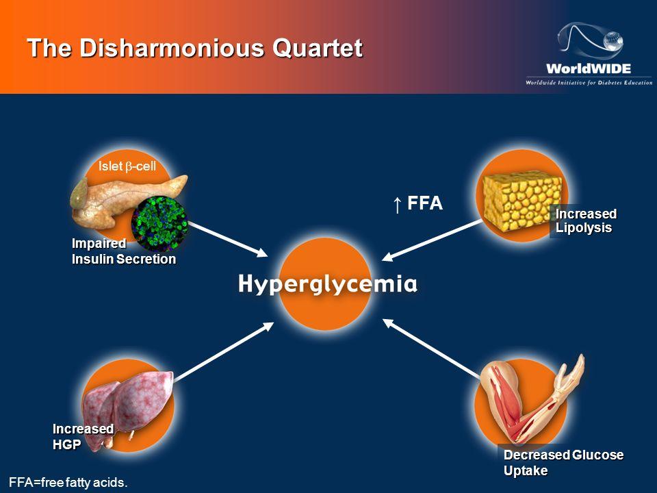 The Disharmonious Quartet Islet -cell Impaired Insulin Secretion IncreasedHGP Decreased Glucose Uptake FFA IncreasedLipolysis FFA=free fatty acids.