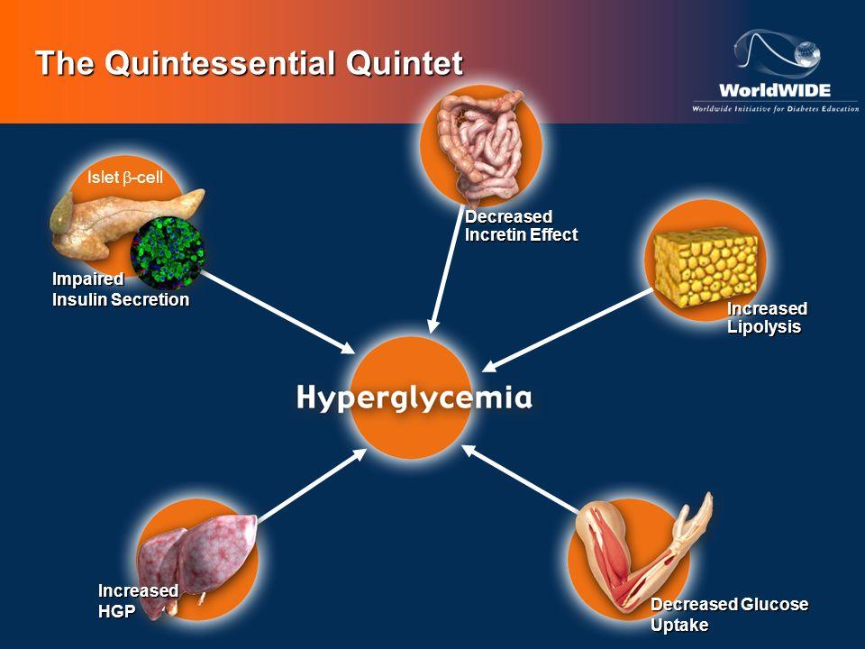 The Quintessential Quintet Islet -cell Impaired Insulin Secretion Decreased Glucose Uptake IncreasedLipolysis Decreased Incretin Effect IncreasedHGP