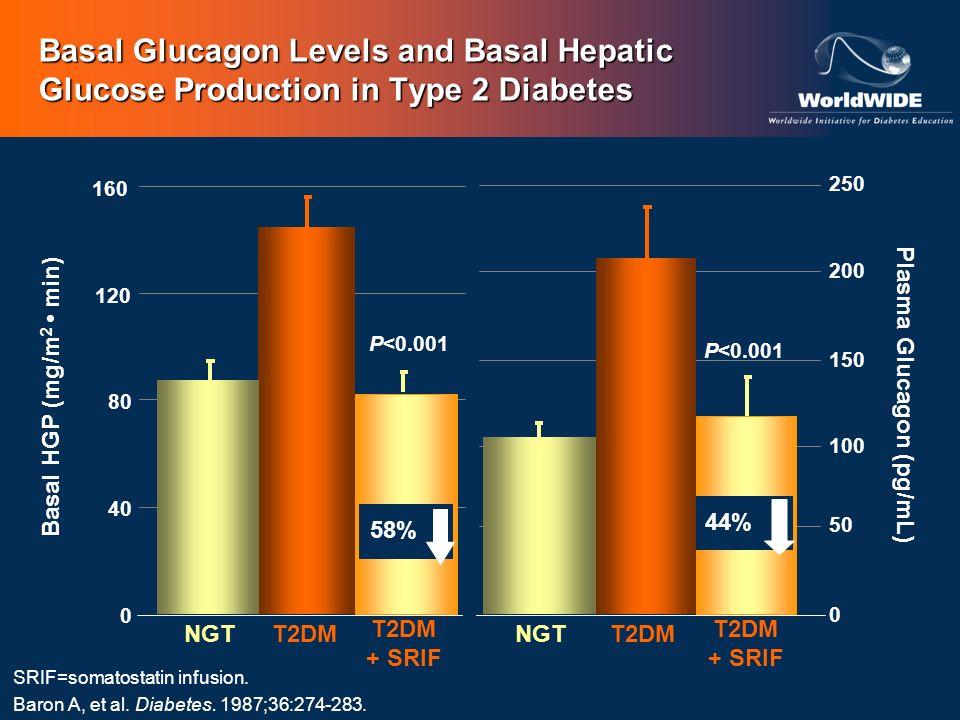 SRIF=somatostatin infusion. Baron A, et al. Diabetes. 1987;36:274-283. 0 50 100 150 200 250 Plasma Glucagon (pg/mL) Basal HGP (mg/m 2 min) 0 40 80 120