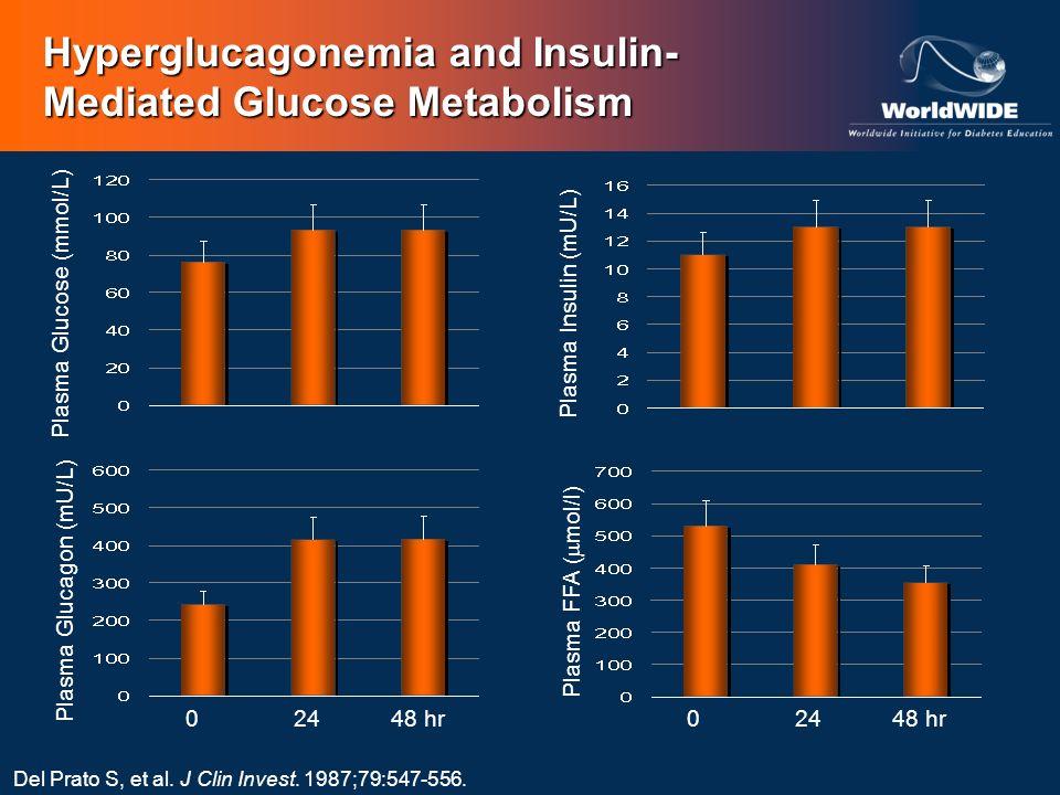 Plasma Glucose (mmol/L)Plasma Insulin (mU/L)Plasma Glucagon (mU/L) 02448 hr Plasma FFA ( mol/l) 02448 hr Del Prato S, et al. J Clin Invest. 1987;79:54