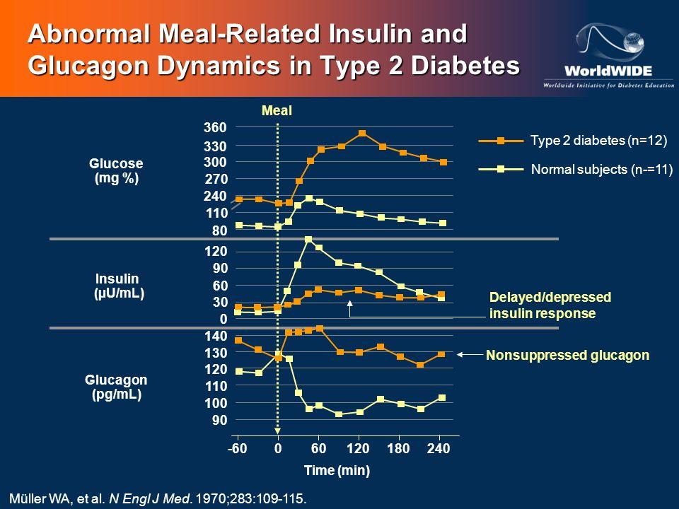 Abnormal Meal-Related Insulin and Glucagon Dynamics in Type 2 Diabetes Glucose (mg %) Insulin (µU/mL) Glucagon (pg/mL) Time (min) Type 2 diabetes (n=1