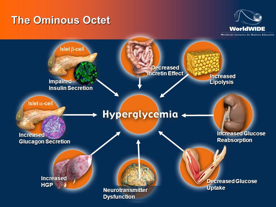 The Ominous Octet Islet -cell Impaired Insulin Secretion NeurotransmitterDysfunction Decreased Glucose Uptake Islet -cellIncreased Glucagon Secretion