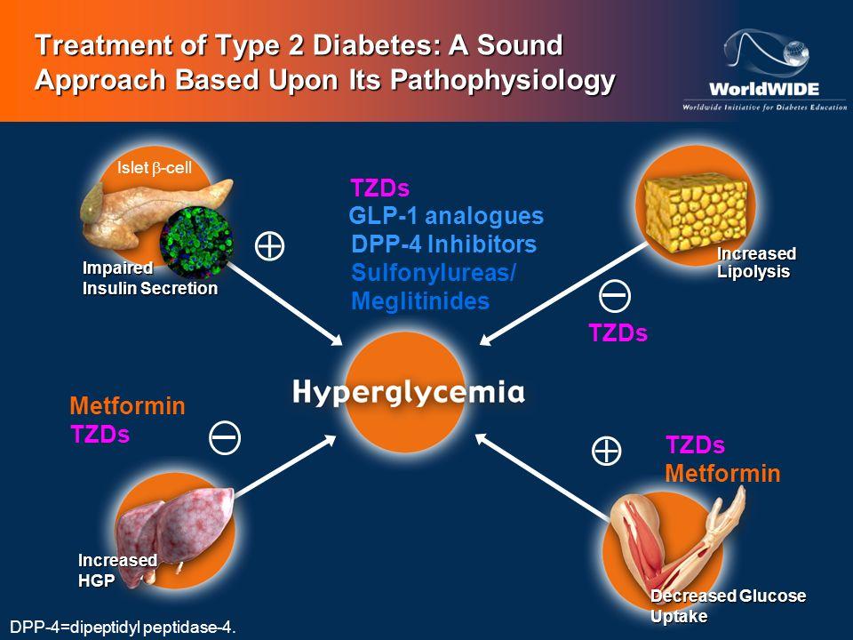 DPP-4 Inhibitors Sulfonylureas/ Meglitinides Treatment of Type 2 Diabetes: A Sound Approach Based Upon Its Pathophysiology Metformin TZDs Metformin GL