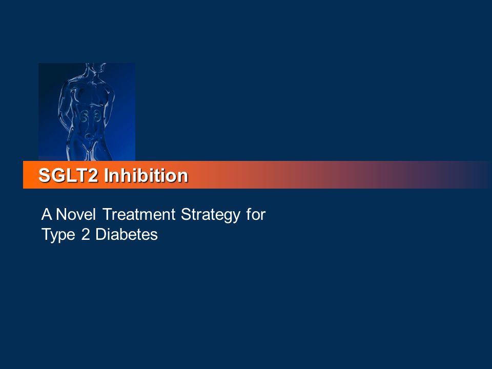 SGLT2 Inhibition A Novel Treatment Strategy for Type 2 Diabetes