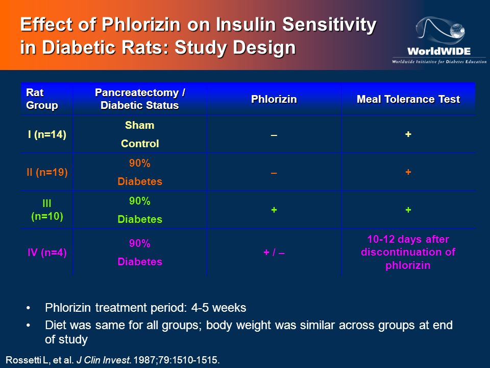 Rossetti L, et al. J Clin Invest. 1987;79:1510-1515. Effect of Phlorizin on Insulin Sensitivity in Diabetic Rats: Study Design Rat Group Pancreatectom