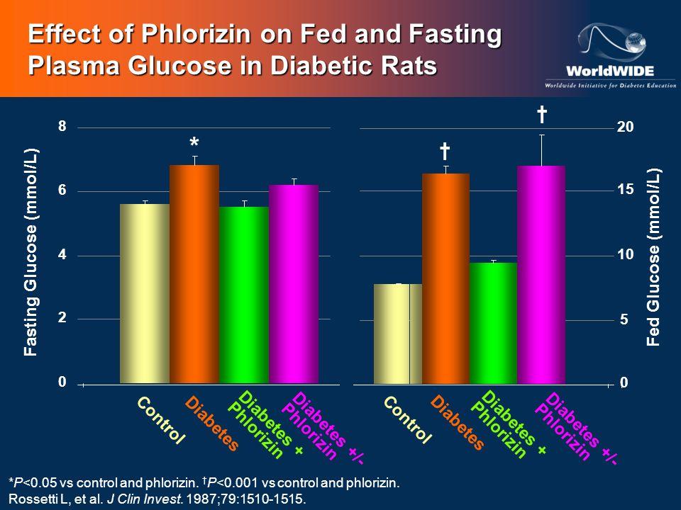 Fasting Glucose (mmol/L) Diabetes +/- Phlorizin Diabetes + Phlorizin Diabetes Control * Fed Glucose (mmol/L) Diabetes +/- Phlorizin Diabetes + Phloriz