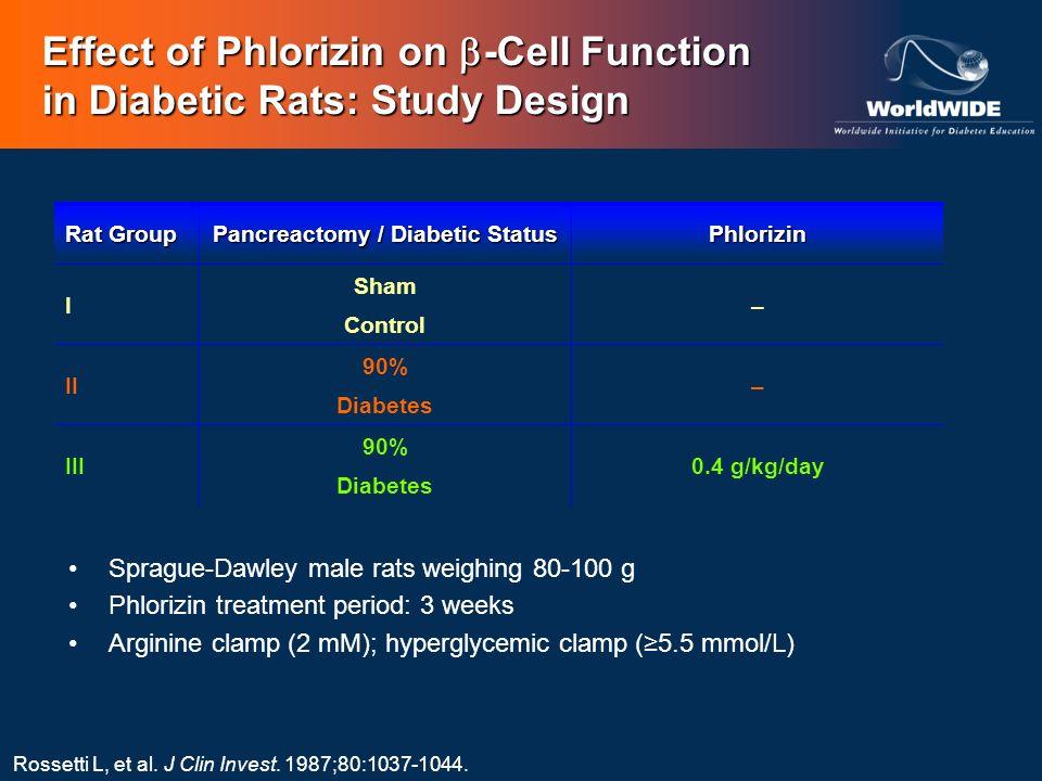 Effect of Phlorizin on -Cell Function in Diabetic Rats: Study Design Rat Group Pancreactomy / Diabetic Status Phlorizin I Sham Control – II 90% Diabet