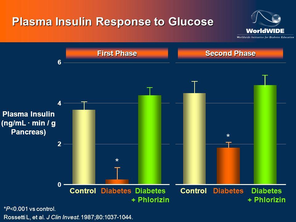 First Phase Second Phase Control Diabetes + Phlorizin Diabetes 6 0 4 * * 2 Plasma Insulin (ng/mL min / g Pancreas) Plasma Insulin Response to Glucose