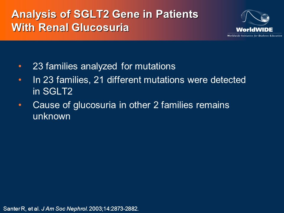 Analysis of SGLT2 Gene in Patients With Renal Glucosuria Santer R, et al. J Am Soc Nephrol. 2003;14:2873-2882. 23 families analyzed for mutations In 2