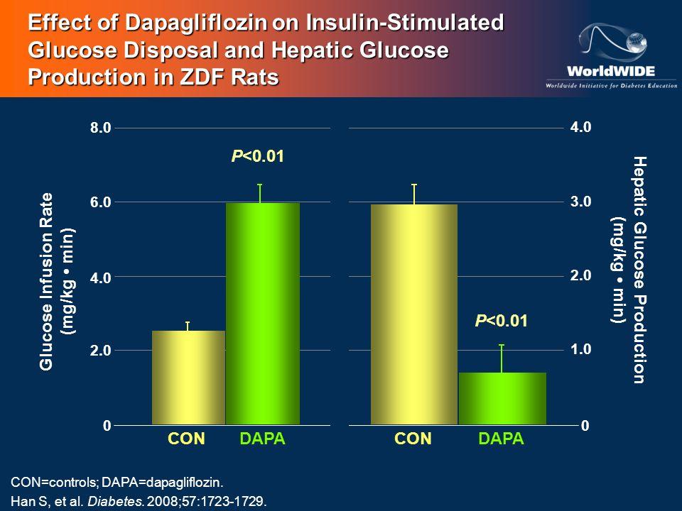 Hepatic Glucose Production (mg/kg min) Glucose Infusion Rate (mg/kg min) 0 1.0 2.0 3.0 4.0 0 2.0 4.0 6.0 8.0 CONDAPACONDAPA P<0.01 CON=controls; DAPA=