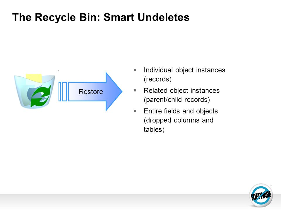 The Recycle Bin: Smart Undeletes Restore Individual object instances (records) Related object instances (parent/child records) Entire fields and objec